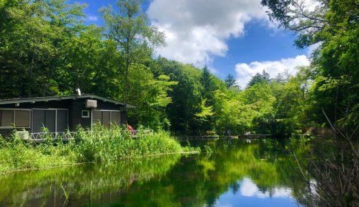 【夏の大人女子旅】軽井沢で今オススメしたい厳選8スポット