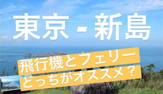 東京調布から新島へ飛行機で行ってきた!小型機って揺れる?狭い?【フェリーV.S.飛行機アクセス比較まとめ】
