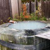 本当は教えたくない…「奥山田温泉 レッドウッドイン」の樹木をくり抜いた露天風呂が最高だった。【長野県】