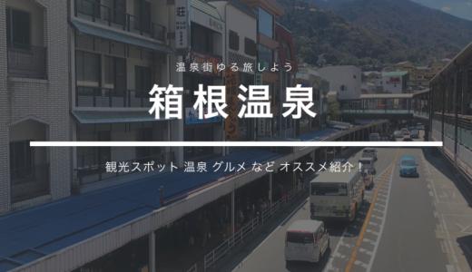 【箱根初心者さん向け】定番の楽しみ方一周ぐるっと鉄板コースを紹介します!