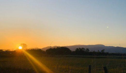 【鹿児島県出水市】初日の出スポット&初詣神社のオススメ